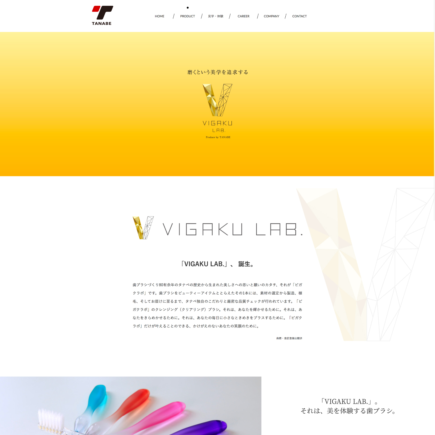 Tanabe_Product
